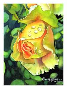 yellow-Rose-(Web)