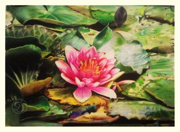 ' Lotus ' (9 in. x 12 in. 80lb.)