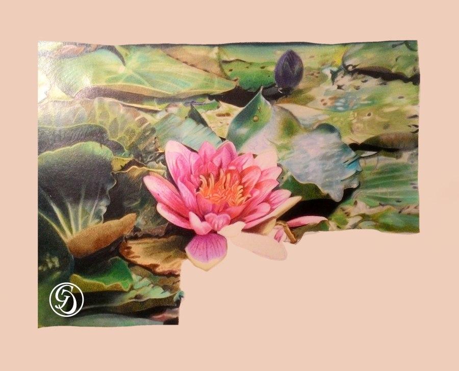 Web-Lotus-GC
