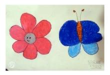 Flowers & Butterfly